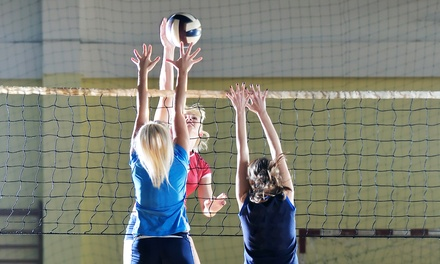 Volleyball Youth Leagues for One, Two, or Four at White Tiger Volleyball (Up to 65% Off)