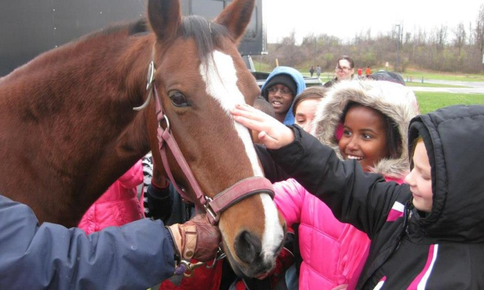 Four Points Farm LLC - Highland: Two Horseback-Riding Lessons at Four Points Farm LLC (34% Off)
