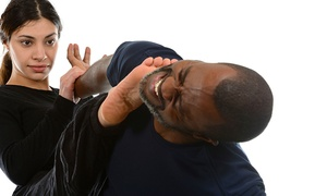 ATA Martial Arts Chicago: 8 or 16 Krav Maga or Martial-Arts Classes at ATA Martial Arts Chicago (Up to 76% Off)