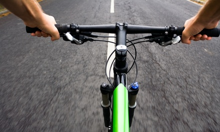 $39 for One Bike Tune-Up at Providence Bicycle ($75 Value)