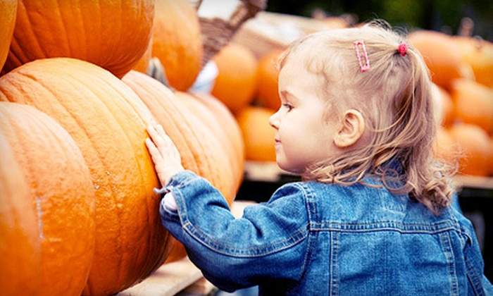 Pumpkin Village Pumpkin Patch - Flower Mound: Fall-Themed Games, Children's Rides, and Hayrides for One, Two, or Four at Pumpkin Village Pumpkin Patch (Up to 56% Off)