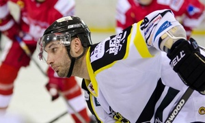 Bracknell Bees: Bracknell Bees Ice Hockey Games atthe John Nike Leisuresport Complex (Up to 48% Off)