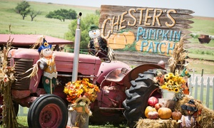Chester's Pumpkin Patch : Admission for Two, Four, or Six to Chester's 15th Annual Pumpkin Patch & Three-Acre Mystery Maze (Up to 45% Off)