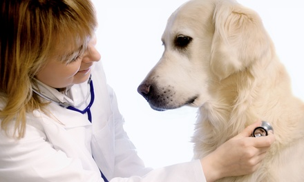 $47 for $100 Toward Veterinary Services at Hanford Village Veterinary Clinic