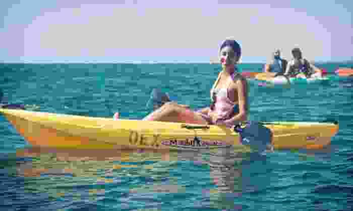 OEX La Jolla - La Jolla Shores: $25 for a 90-Minute Sea-Cave Tour from OEX La Jolla (Up to $65 Value)