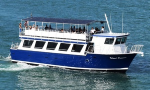 Miami Aqua Tours: Sightseeing Boat Tours for One from Miami Aqua Tours (33% Off)