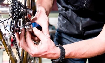 Basic Bicycle Service