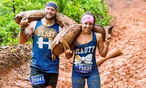 BattleFrog Race Series: Entry to the 8K, 8K Elite Wave, or Xtreme Race at the BattleFrog Race Series November 7 (Up to 41% Off)