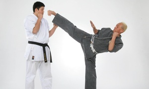 Tryumph Academy of Martial Arts: $120 for $400 Worth of Martial-Arts Lessons — Tryumph Academy of Martial Arts