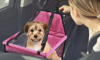 Upgraded Pet Booster Seat
