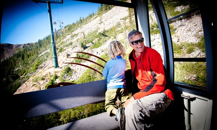 Sightseeing Gondola Ride for Two or a Family at Kicking Horse Mountain Resort (Up to 36% Off)