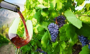 Vignoble le Nordet: Visite, dégustation de vins et bouteille offerte pour 2 ou 4 personnes au Vignoble le Nordet (jusqu'à 63 % de rabais)