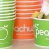 $5 for Frozen Yogurt at Peachwave Mt. Juliet
