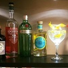 Trio of Gins with Mixers