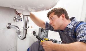The Geiler Company: $49 for a Comprehensive Plumbing Inspection and Water-Heater Flush from The Geiler Company ($170 Value)