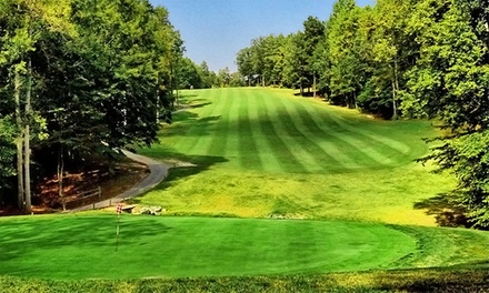 Day of Unlimited Golf with Cart Rental for 2 at Cameron Hills Golf Links (Up to 64% Off). 2 Options Available.