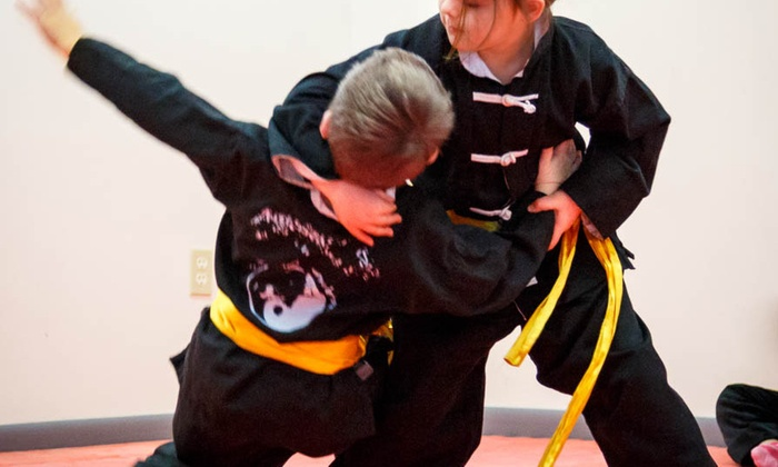 American Studio Of Martial Arts - Multiple Locations: Three Weeks of Unlimited Martial Arts Classes at American Studio Of Martial Arts (61% Off)