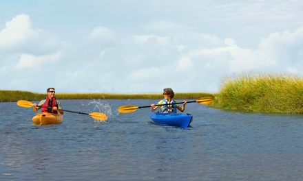 90-Minute Kayak Tour for Two or Four from Omni Amelia Island Plantation Resort (Up to52% Off)