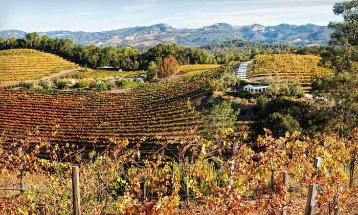 Jack London Lodge - Sonoma Valley, CA: One-Night Stay with Day Passes to the State Park, Wine Passes, and Drinks at Jack London Lodge in Glen Ellen, CA