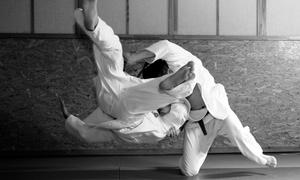 The Dojo Martial Arts School: Jiu-JitsuClasses at The Dojo Martial Arts School (Up to 74% Off). Three Options Available.