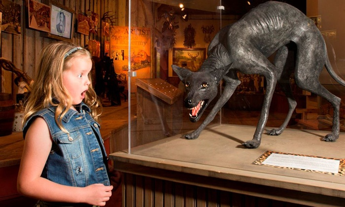 Buckhorn Museum & Saloon and Texas Ranger Museum - Downtown: Visit for Two or Four to Buckhorn Museum & Saloon and Texas Ranger Museum (Up to 47% Off)