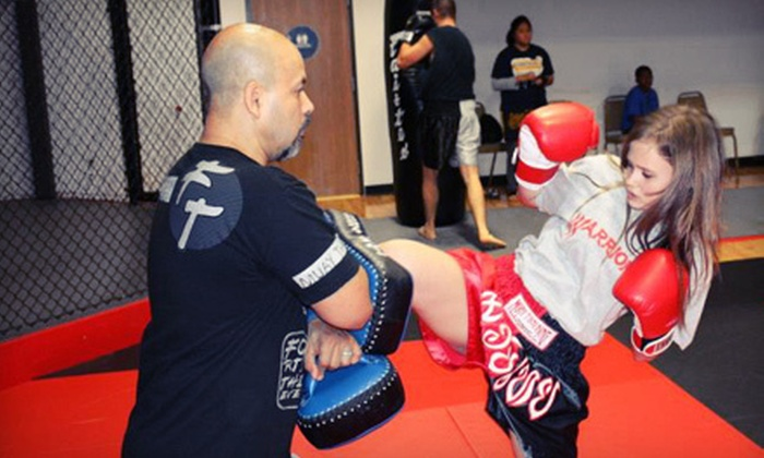 WarriorMMA - North Sacramento: 5 or 10 Muay-Thai, Jiu-Jitsu, or Mixed-Martial-Arts Classes at WarriorMMA (Up to 81% Off)