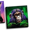 Splash Animals Gallery-Wrapped Canvas Prints