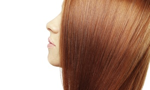 Downtown Salon & Gallery: Women's Haircut with Conditioning Treatment from Downtown Salon and Gallery (55% Off)