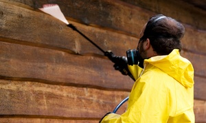 ETB Solutions: Pressure Washing for 1 or 1.5 or 2 Stories from ETB Solutions (Up to 56% Off)