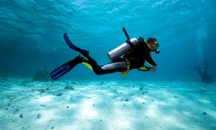 Pirates Cove Scuba - Oklahoma City: Discover Scuba Class or Open-Water Certification Class with Optional Lake Dives at Pirates Cove Scuba (Up to 60% Off)