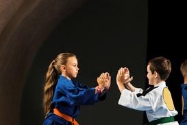 Ms. Ferdinandova's Ballet School: $7 for 10 Martial Arts Classes — Ms. Ferdinandova's Ballet School