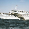 Cape Ann Whale Watch – Up to 38% Off Cruises