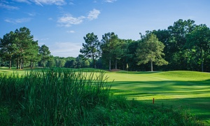 RiverPines Golf Course: 18 Holes Golf for 2 or 4 or Punch Card for 9-Hole Golf or Range Balls at RiverPines Golf Course (Up to 46% Off)