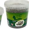 Catnip Garden Catnip Cups (Two Sizes)
