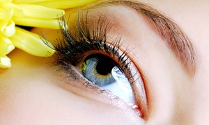 Spatastic Bodywraps: Full Set of Eyelash Extensions with Optional Touch-Up Appointment at Spatastic Bodywraps (Up to 42% Off)