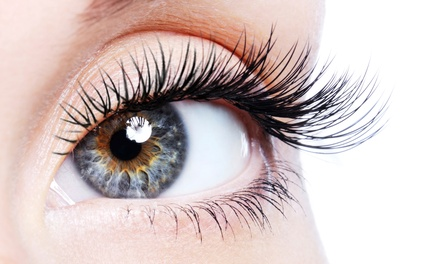 One Full Set of Siberian Mink Eyelash Extensions with Optional Refill at Pure Lash Studio (Up to 67% Off)