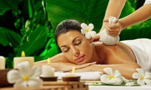 Istituto di Salute Integrale: 24 ore di corso di massaggio a scelta per una o 2 persone all'Istituto di Salute Integrale (sconto fino a 95%)