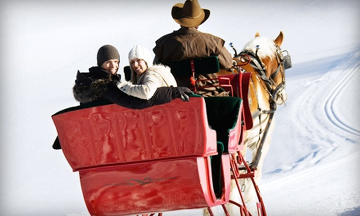 Ma & Pa's - Troy: Horse-Drawn Sleigh or Carriage Ride for Two or Four from Ma & Pa's (Up to 51% Off)