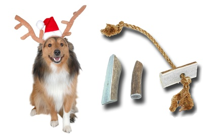 Buckey Bites Holiday Gift Set for Small or Large Dogs. Free Returns.