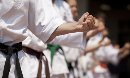 10 or 20 Drop-In Classes at Atlantic Karate Club (Up to 86% Off)