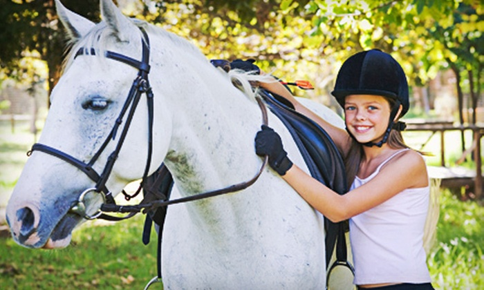 Lynette's Riding School - East Central San Antonio: $75 for One Month of Horseback-Riding Lessons at Lynette's Riding School ($150 Value)