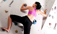 Four-Week Basic or Lead Climbing Course for One or Two from Sunderland Wall (Up to 71% Off)