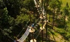 Blue Mountain Resort - Palmerton: High Ropes Course Adventure with Ziplining at Blue Mountain Resort (Up to 46% Off). Three Options Available.