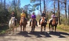 Splendor Farms - Bush, LA: One- or Two-Hour Horseback Trail Ride for Two at Splendor Farms (Up to 59% Off)