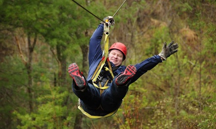 Zipline Canopy Tour for Two or Four from French Broad Rafting and Ziplines         (34% Off)