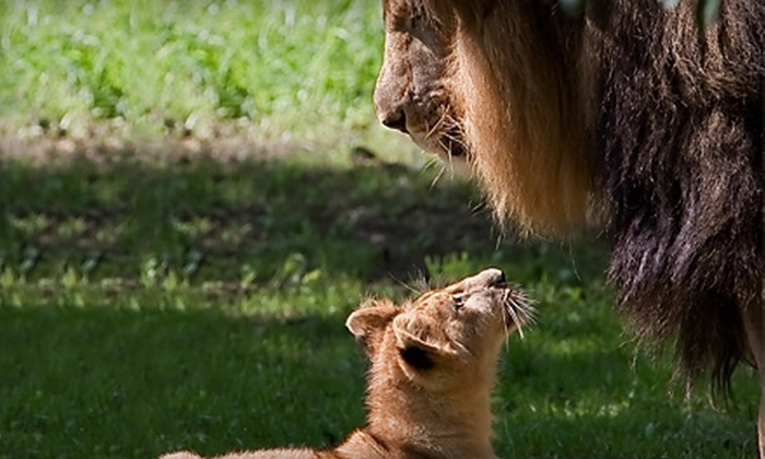 Utica Zoo - South Utica: Visit to Utica Zoo for Up to Eight (Up to 56% Off). Four Options Available.