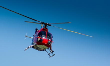 Daytime Helicopter Tour of Chicago for Two or Three from Sun Aero Helicopters (Up to 44% Off)