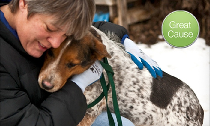 Colville Valley Animal Sanctuary: $10 Donation to Train Rescued Dogs
