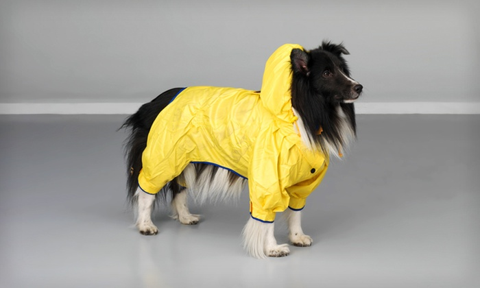 Pet Ego Dog Rich Yellow Dog Raincoat: Pet Ego Rainforest Yellow Dog Raincoat (Up to 57% Off). Six Sizes Available. Free Shipping on Purchases of $15 or More.