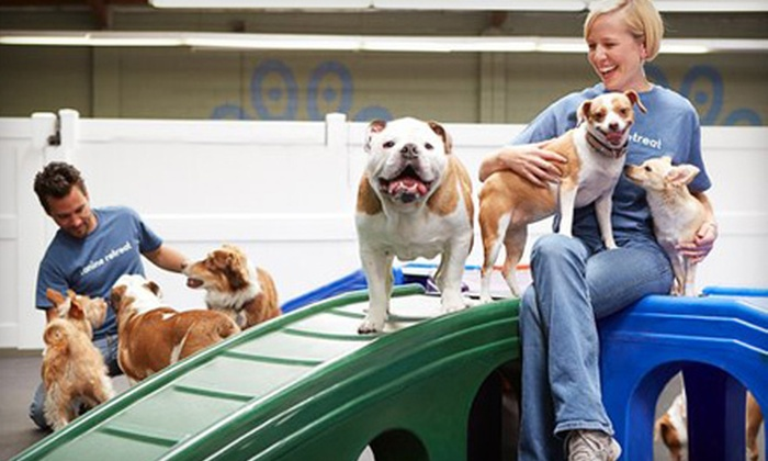 Canine Retreat - Harbor City: One, Five, or Ten Days of Doggy Daycare at Canine Retreat (Up to 62% Off)